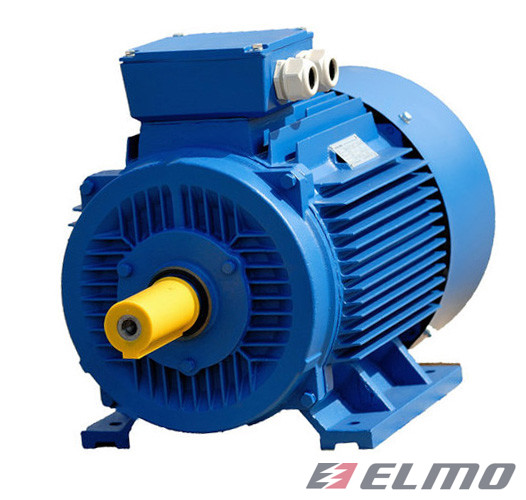 Электродвигатель АИР 100